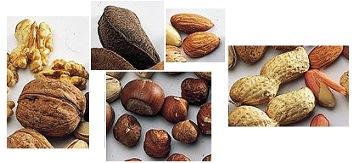 sind cashewkerne basisch