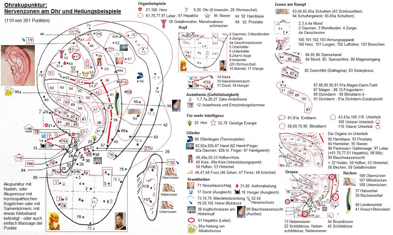 Neuropsychedelia : the revival of hallucinogen research